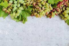 Disposición con sabor a fruta de uvas en un fondo azul apacible Los viñedos en otoño cosechan las uvas maduras en la caída, vinif fotos de archivo
