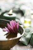 Disposición de Aromatherapy Fotografía de archivo