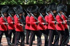 Dispositif protecteur royal britannique Photos libres de droits