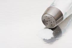 Dispositif trembleur de sel Photographie stock libre de droits