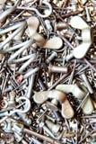 Dispositifs de fixation en métal Images libres de droits