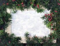 Disposition créative faite à partir des branches d'arbre de Noël avec le berri rouge photo libre de droits