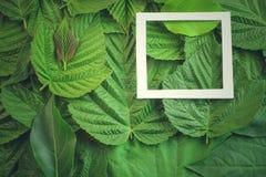 Disposition créative faite de fleurs et feuilles avec la note de carte de papier Configuration plate Concept de nature Images stock