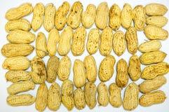 Disposition d'arachide Photographie stock