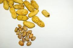 Disposition d'arachide Photos libres de droits