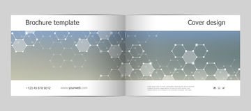 Disposition de calibre de brochure de rectangle, couverture, rapport annuel, magazine dans la taille A4 avec la structure hexagon Images stock