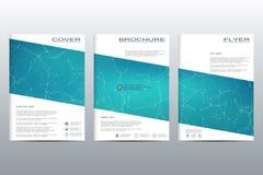 Disposition de calibre de brochure, insecte, couverture, rapport annuel, magazine dans la taille A4 Structure des particules et d Photographie stock libre de droits