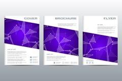 Disposition de calibre de brochure, insecte, couverture, rapport annuel, magazine dans la taille A4 Structure des particules et d Images stock