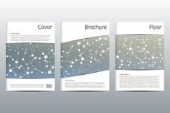 Disposition de calibre de brochure, insecte, couverture, rapport annuel, magazine dans la taille A4 Structure des particules et d Photo stock
