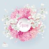 Disposition de vecteur de fleur de chrysanthèmes et d'Apple Image stock