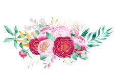 Disposition des fleurs de pivoine illustration de vecteur