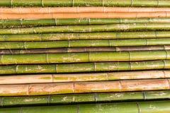 Disposition en bambou de Polonais Photographie stock