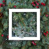 Disposition faite de branches d'arbre de Noël Maquette, configuration plate Concept de saison d'hiver de nouvelle année photos stock
