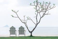 Disposition minimaliste simple de doubles bancs sur l'herbe verte image stock