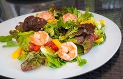 Dispositivo d'avviamento del pasto dei frutti di mare del piatto di insalata del gamberetto Fotografia Stock Libera da Diritti
