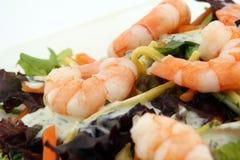 Dispositivo d'avviamento sano dell'insalata di dieta del gamberetto e della tagliatella Fotografia Stock