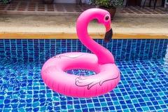 Dispositivo de flutuação do flamingo foto de stock royalty free