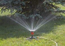 Dispositivo de la irrigación del césped Imagen de archivo