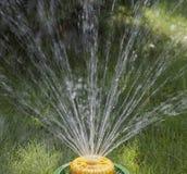 Dispositivo de la irrigación del césped Fotos de archivo