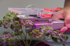 dispositivo de medição do CO2 para medir a fotossíntese do growi da planta imagem de stock royalty free