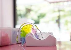 Dispositivo ortodóntico del criado dental foto de archivo libre de regalías