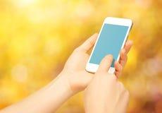 Dispositivo vuoto in bianco del telefono in mani della donna sulla natura in autunno Fotografia Stock Libera da Diritti