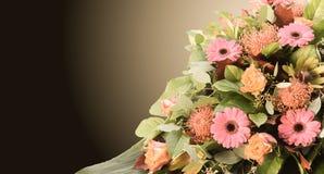 Disposizione con i fiori variopinti freschi Fotografia Stock