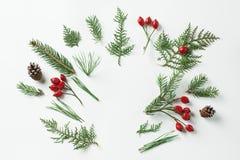 Disposizione creativa del modello fatta dell'albero di Natale e dei rami rossi delle bacche dell'agrifoglio con lo spazio della c Immagini Stock