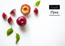 Disposizione creativa delle prugne fresche di estate su un fondo bianco con spazio per testo Immagine Stock