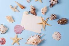Disposizione creativa fatta delle conchiglie e della cartolina d'auguri variopinte differenti Immagini Stock