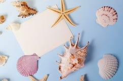Disposizione creativa fatta delle conchiglie e della cartolina d'auguri variopinte differenti Immagine Stock Libera da Diritti