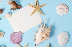 Disposizione creativa fatta delle conchiglie e della cartolina d'auguri variopinte differenti Fotografie Stock
