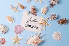 Disposizione creativa fatta delle conchiglie e della cartolina d'auguri variopinte differenti con ciao l'iscrizione di estate Immagini Stock