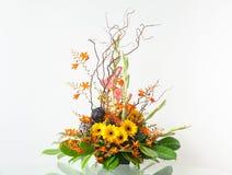 disposizione dei fiori Immagini Stock Libere da Diritti
