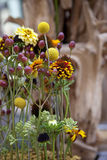 disposizione dei fiori Immagini Stock