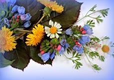disposizione dei fiori Immagine Stock