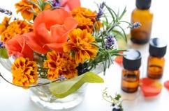Disposizione dei fiori del tagete con gli oli essenziali Fotografia Stock Libera da Diritti