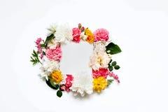 Disposizione dei fiori di Alstroemeria, eustoma, rose, cuore di emorragia su un fondo bianco Fotografia Stock Libera da Diritti