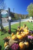 Disposizione dei fiori di autunno e delle zucche lungo l'itinerario scenico 100, VT Immagine Stock