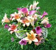 Disposizione dei fiori fresca Fotografia Stock Libera da Diritti