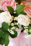 Disposizione dei fiori rosa di colore con luce naturale Immagini Stock