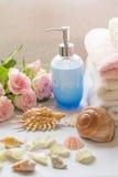 Disposizione del bagno con le rose rosa romantiche Immagini Stock