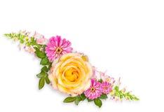 Disposizione del montaggio del fiore con lo spazio della copia fotografia stock libera da diritti