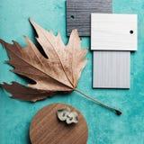 Disposizione del piano di tema di interior design di autunno Immagine Stock
