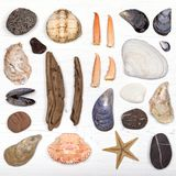 Disposizione del piano del tesoro della spiaggia Immagini Stock