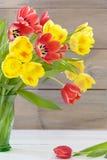 Disposizione del tulipano fotografia stock