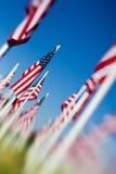 Disposizione delle bandierine degli S.U.A. di Giorno dei Caduti Fotografie Stock Libere da Diritti