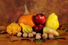 Disposizione delle zucche e dei frutti con le foglie secche Fotografia Stock