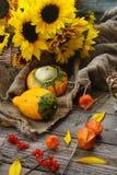 Disposizione di autunno con le zucche decorative, girasoli, mele Fotografia Stock