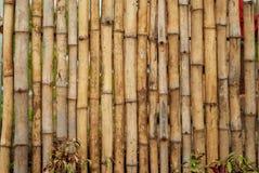 Disposizione di bambù semplice per un recinto o una parete fotografia stock libera da diritti